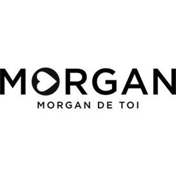 Afbeelding voor fabrikant Morgan de toi